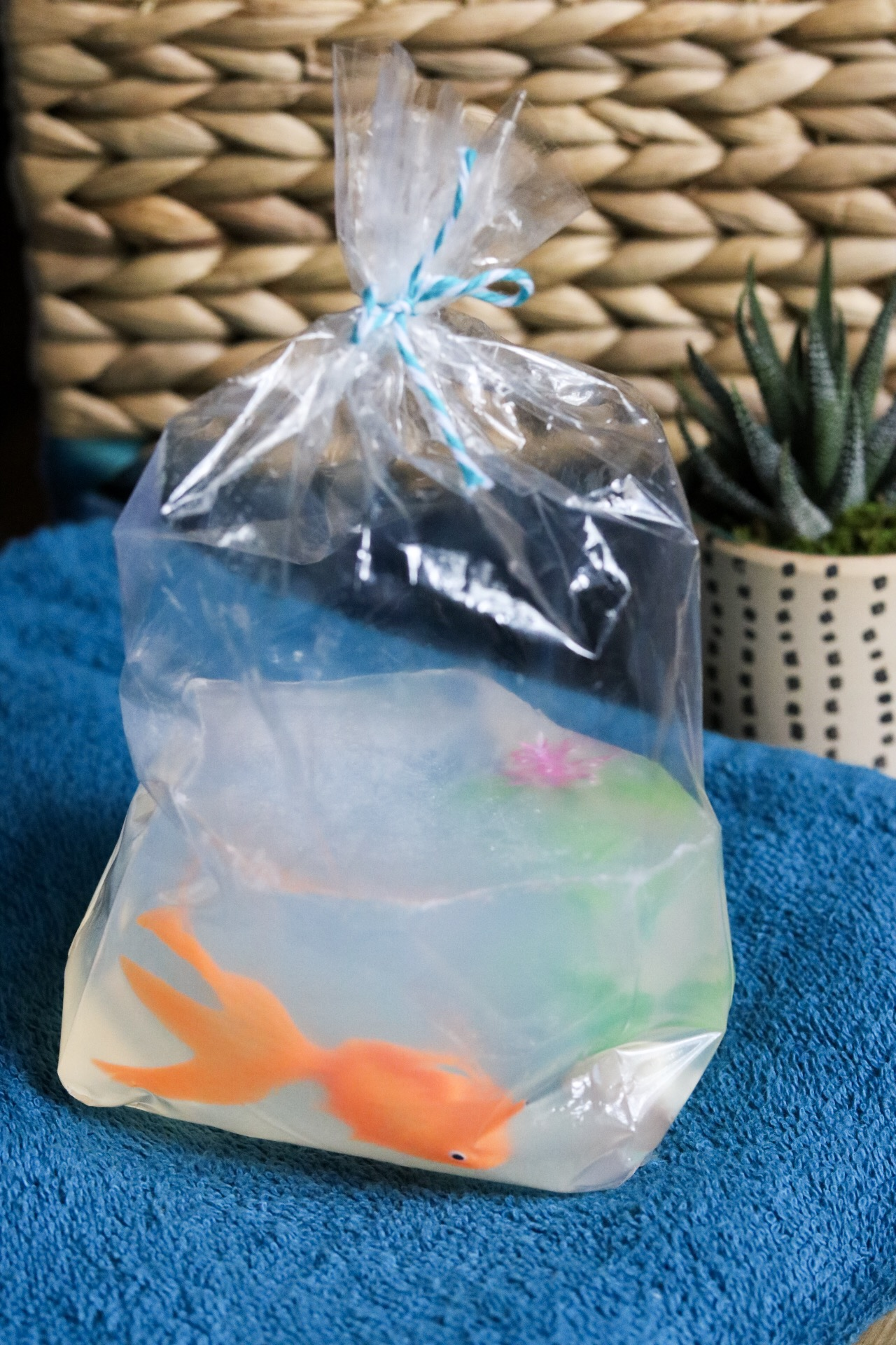 Fish in a Bag Soap DIY #handmadesoap #handmade #goldfish #bathroomdecor #bathroom #soap #fishinabag