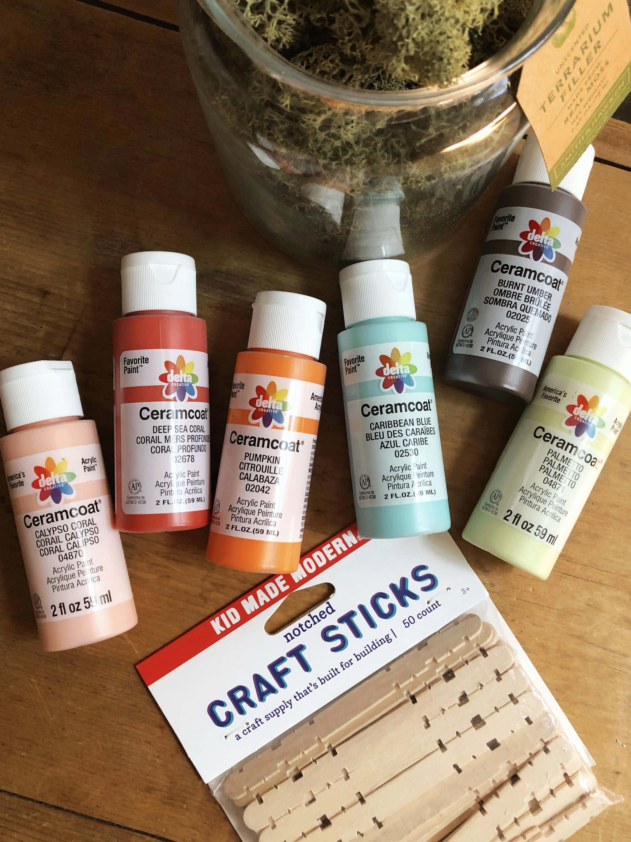 Summer camp throwback craft! Create a one of a kind plater with craft sticks and acrylic paint from Target! #plaidcrafts #craftsticks #target #ceramcoat #getcrafty #kidscrafts #campcrafts #acrylicpaint #moss #summercraft #houseplant #sponsored #DIY #indoorgarden