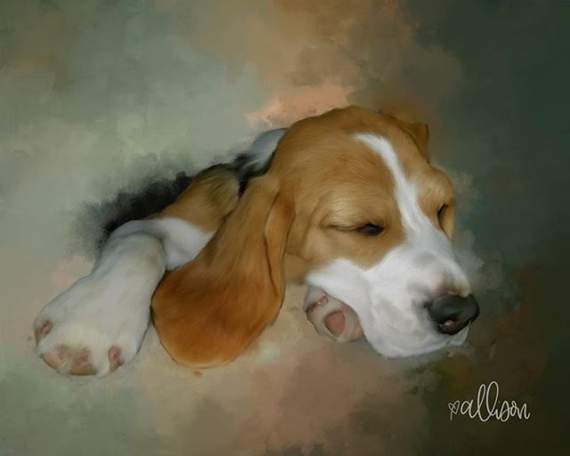 Shhhh! Poppie is sleeping. Digital painting