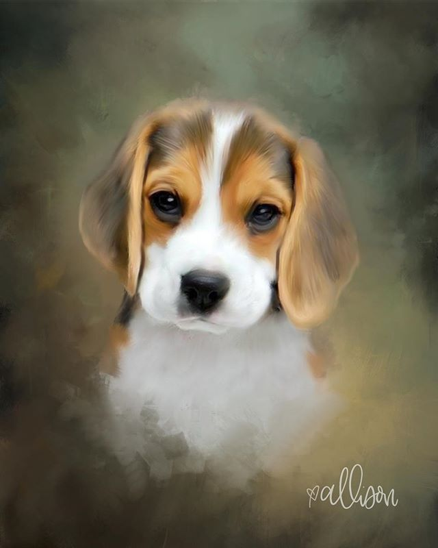 Digital painting of a beagle puppy. I worked from a photograph to paint her in Photoshop.