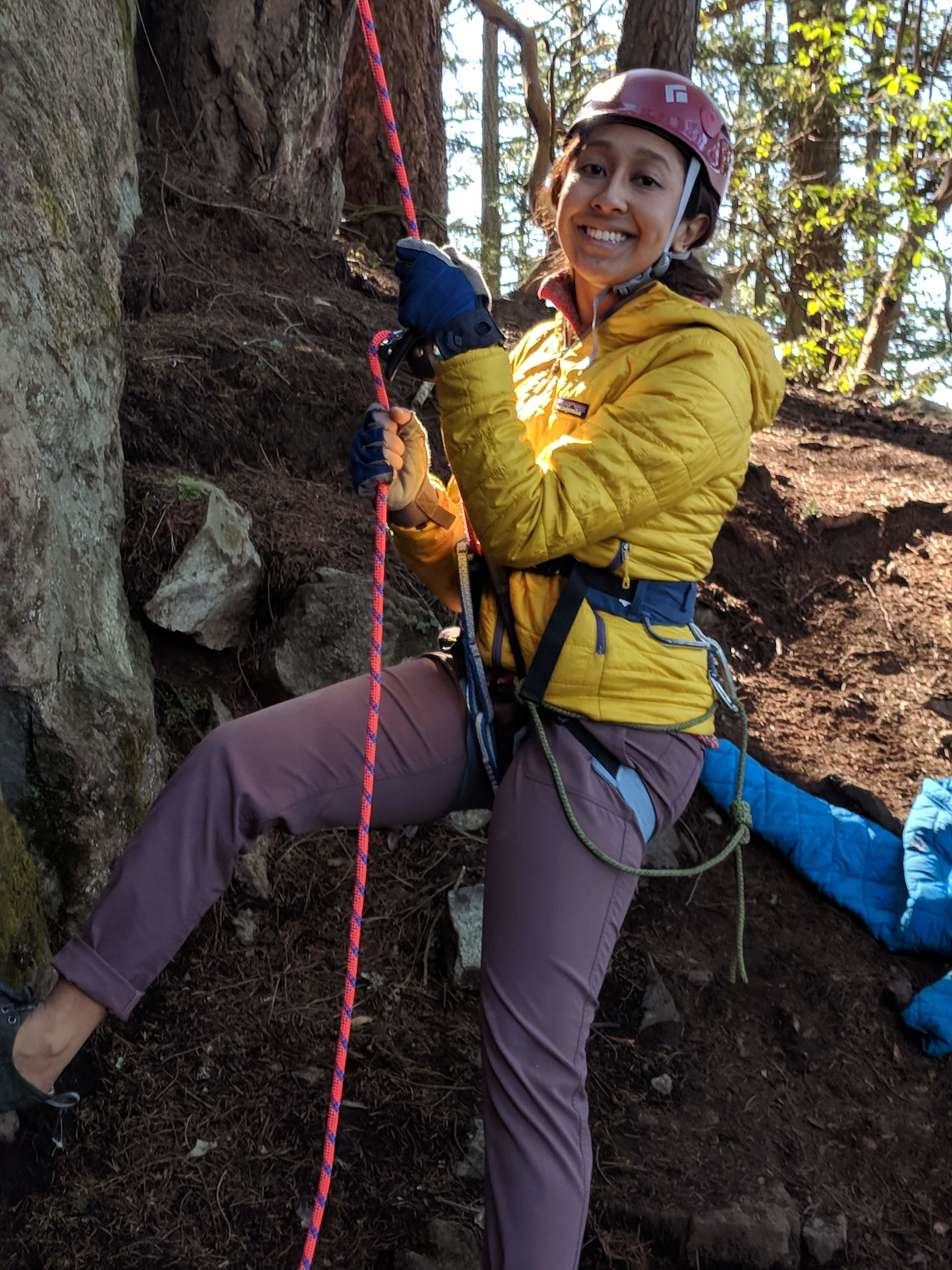 Treeline Climber's Festival