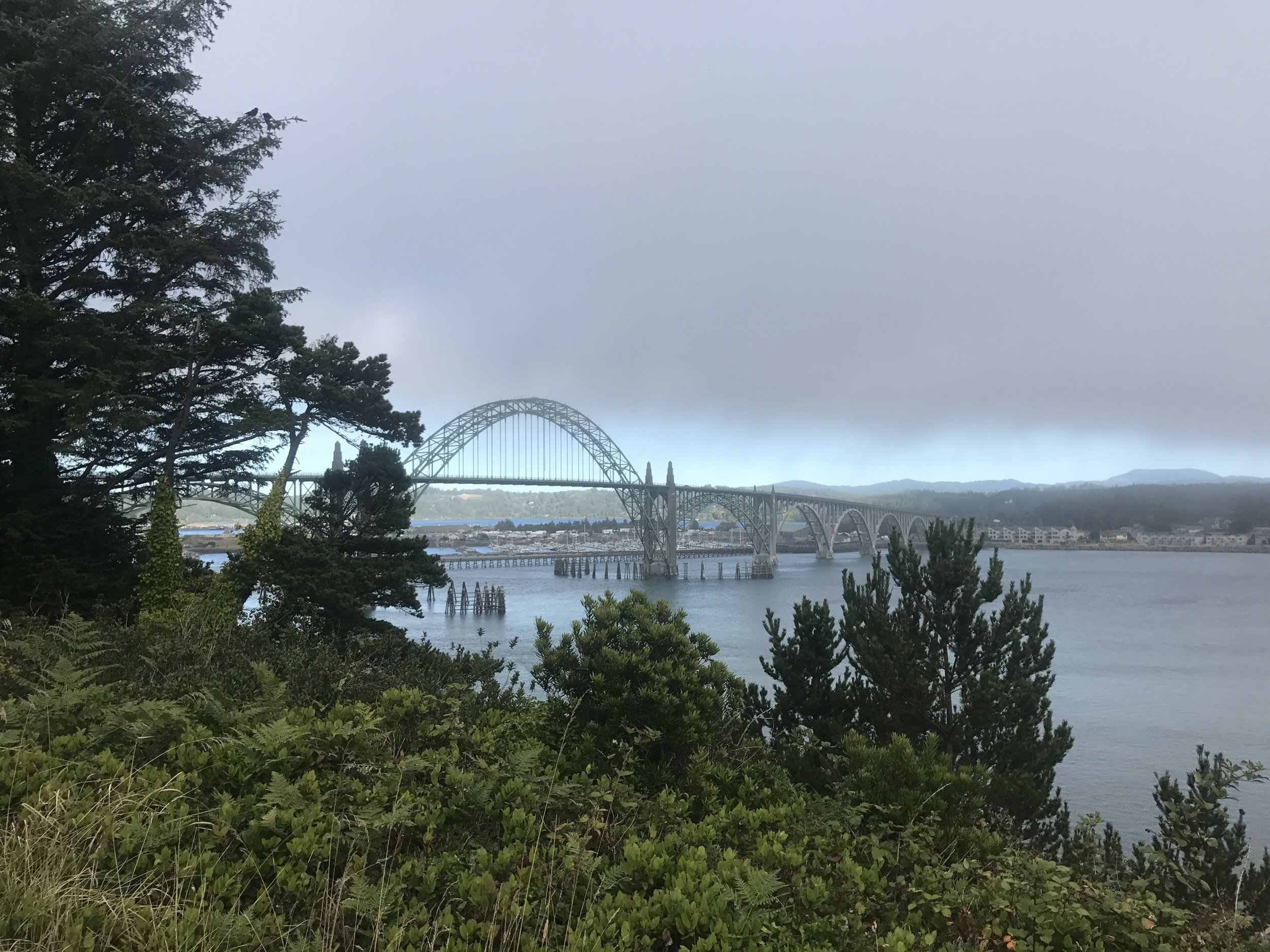 Morning run views of the Newport Bridge
