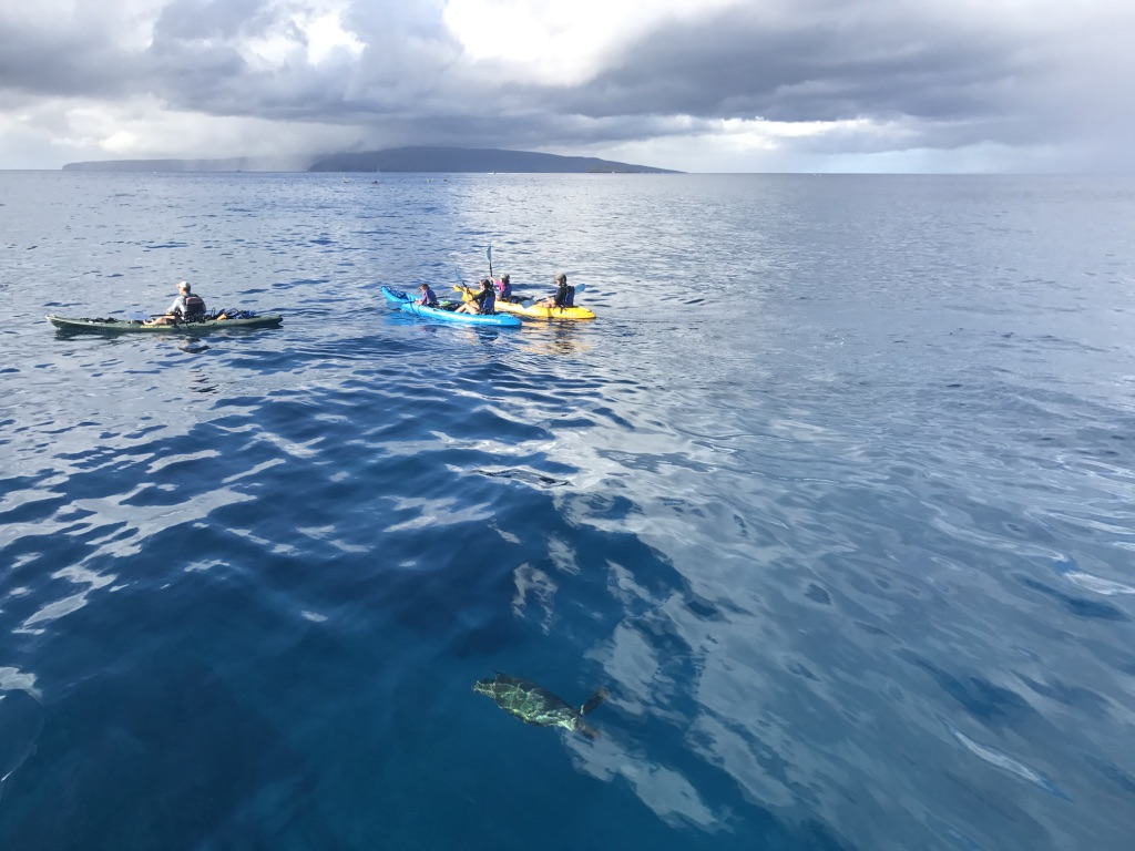 Living aloha at work - how can we not feel completely at peace on the big blue? Can we save her before it's too late?