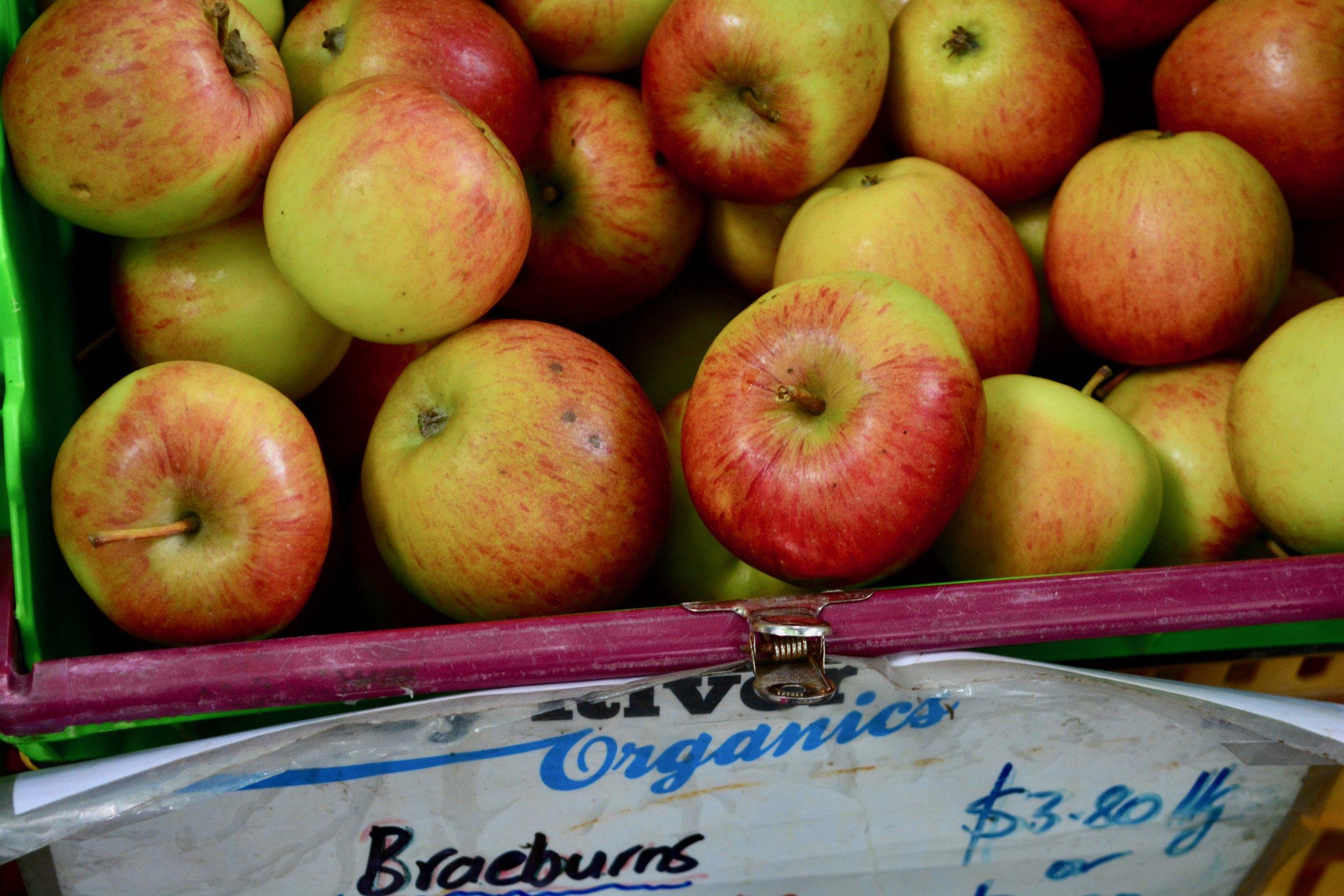 Apples at Christchurch Farmer's Market