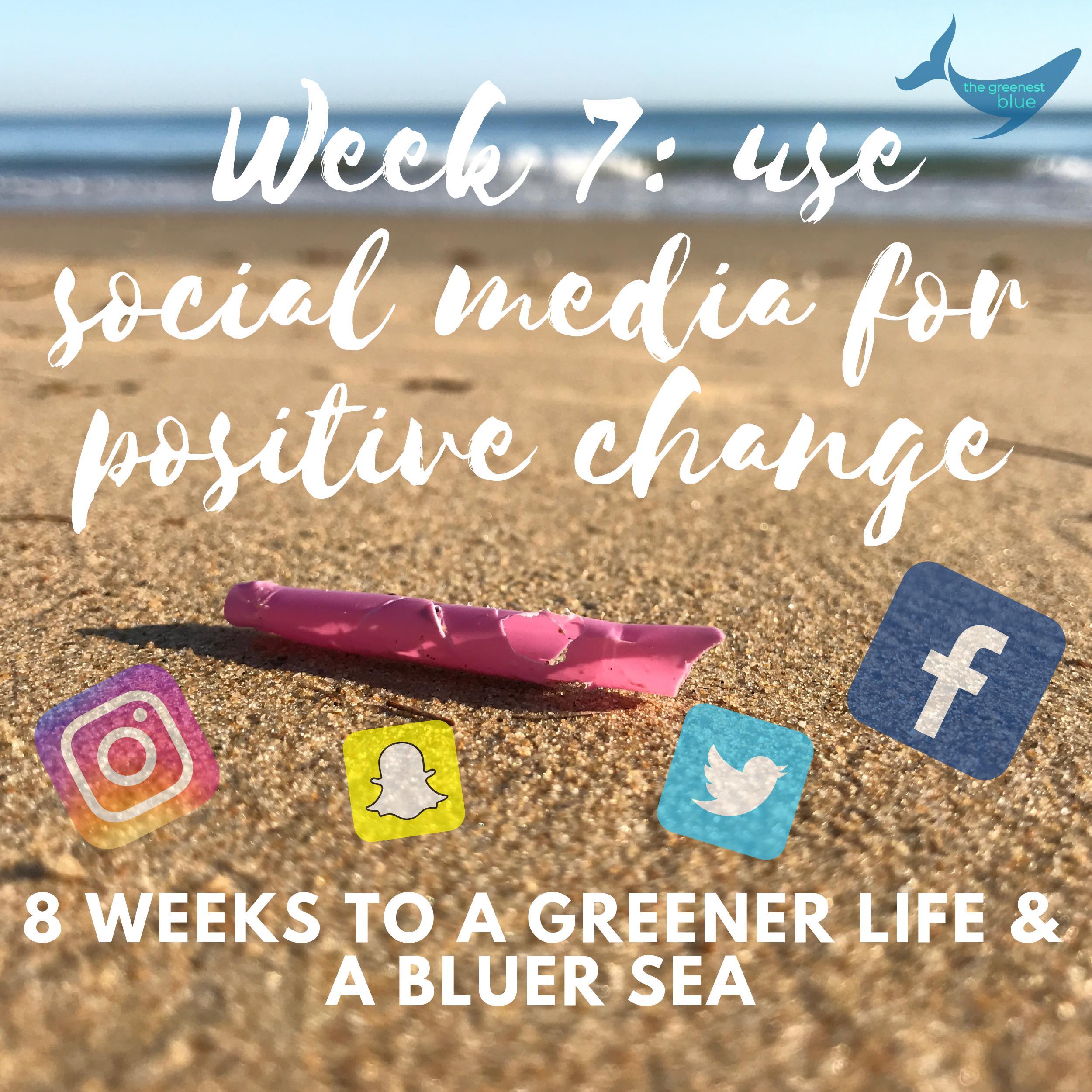 Week 7 Eco Challenge