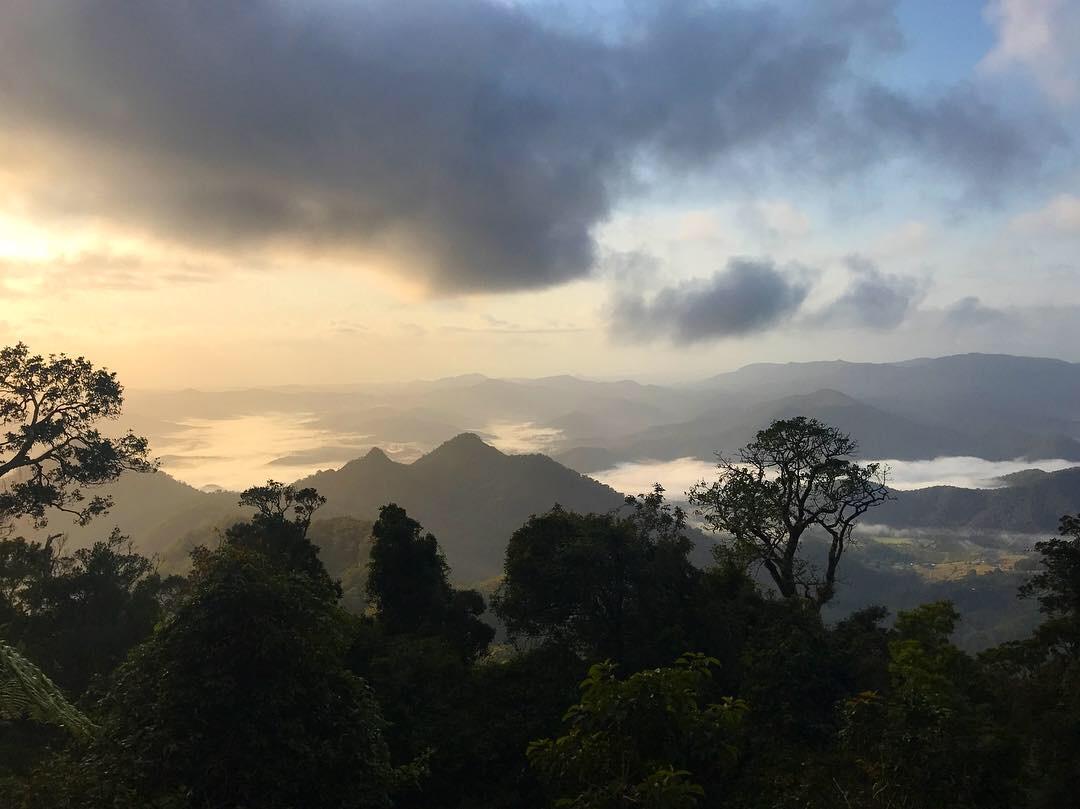 Mount Warning Sunrise Hike