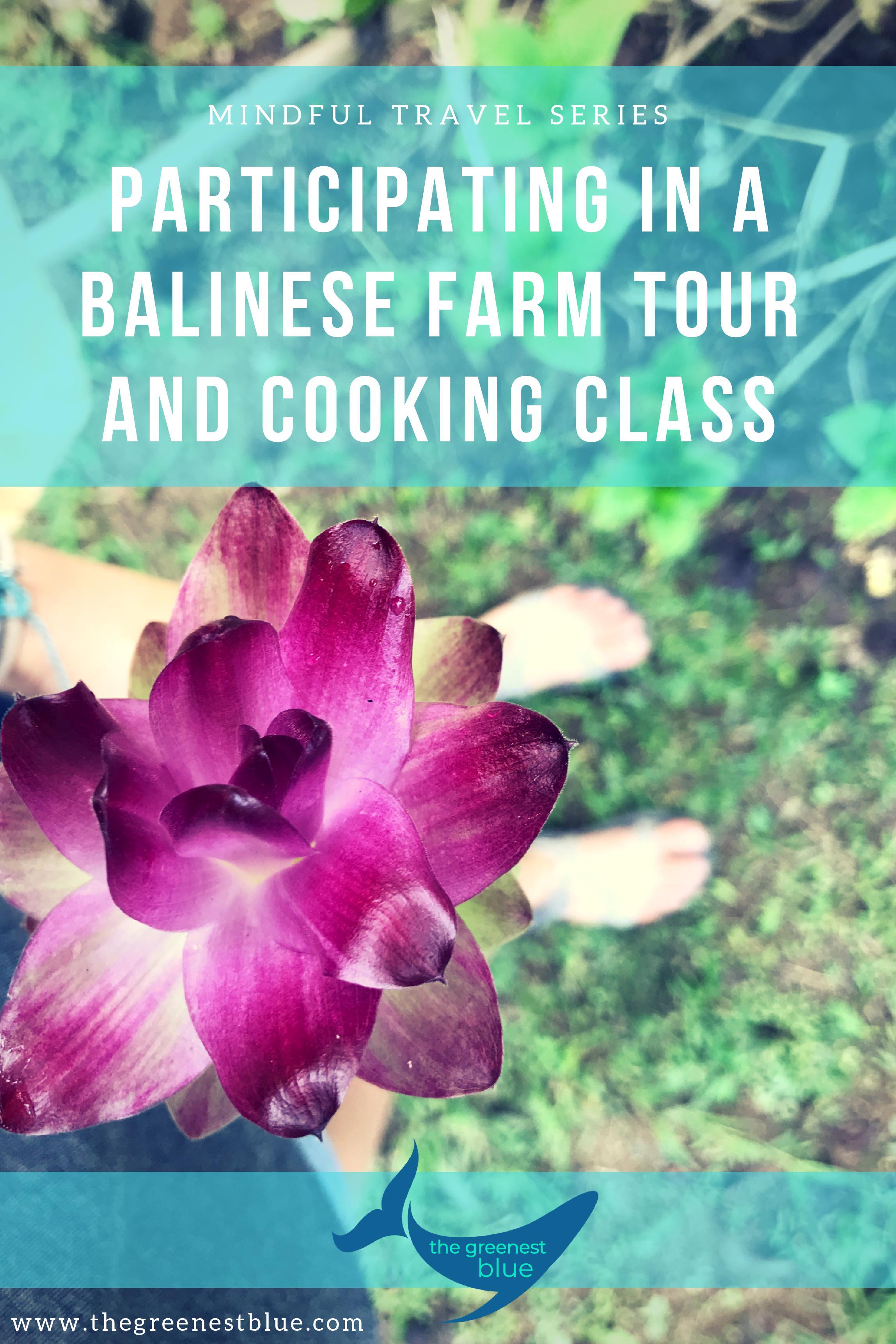 Balinese Cooking School