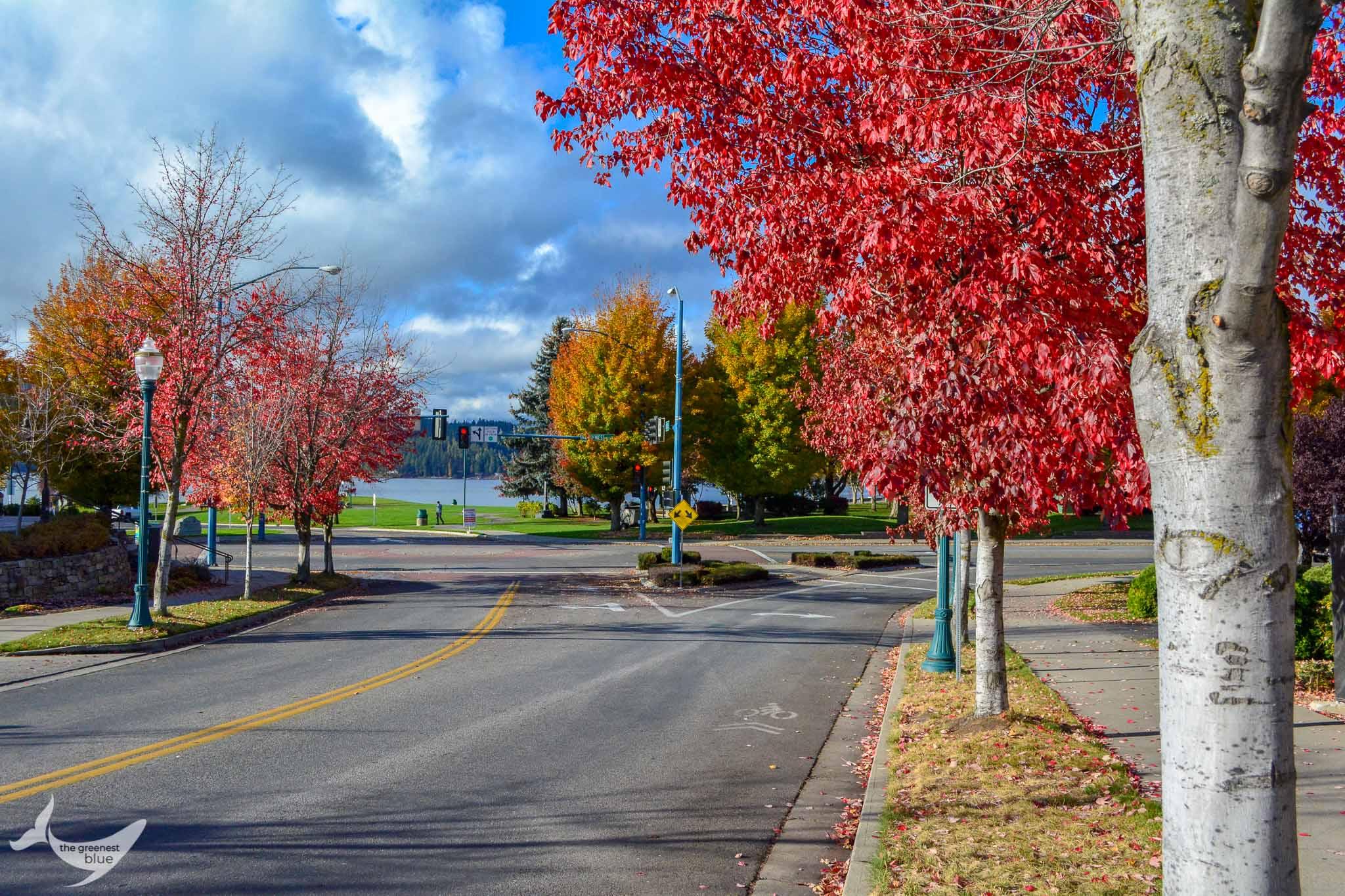 Fall in Coeur d'Alene, Idaho