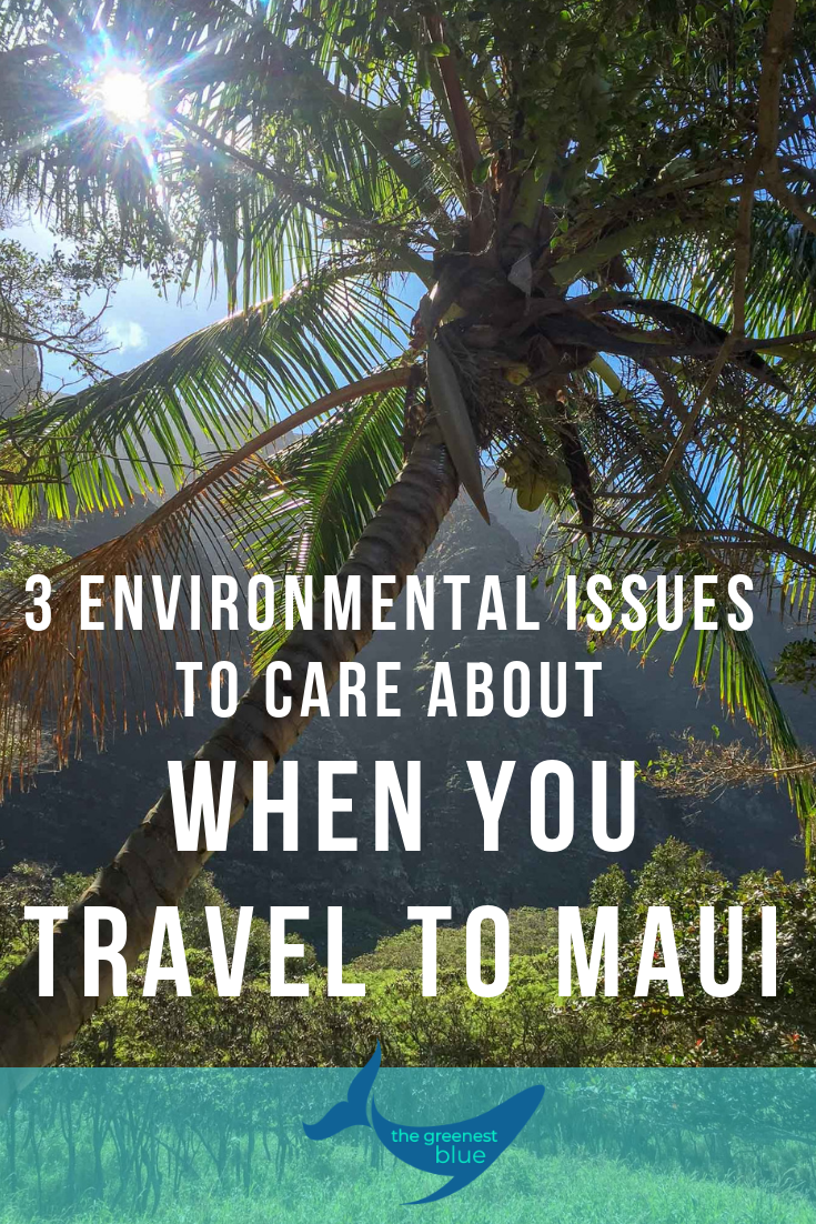 3 Environmental Issues to Care About when you Travel to Maui - Mindful travel is incredibly important in a world where overexploitation of beautiful, natural places is all too common. Be kind and do your research about the places you're visiting.