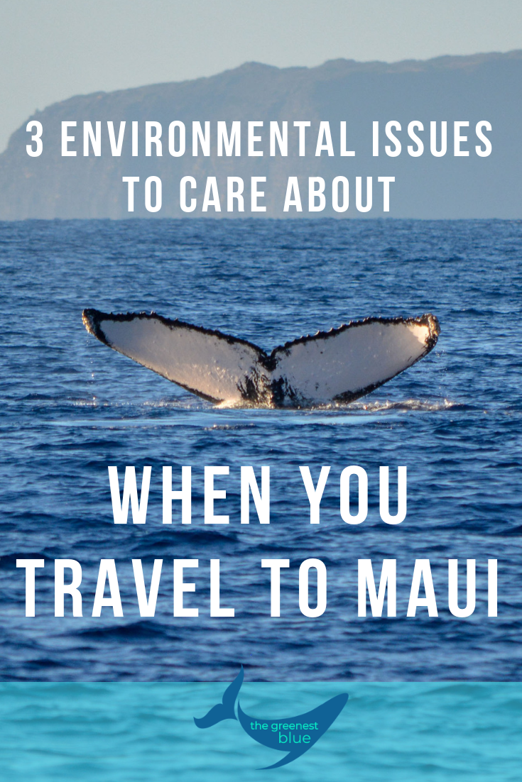 3 Environmental Issues to Care About when you travel to Maui