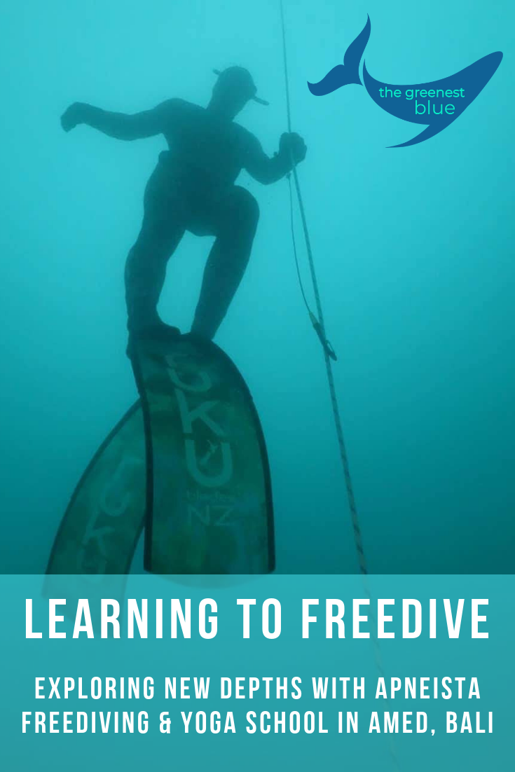 Exploring New Depths with Apneista's Level One Freediving Course - Bali