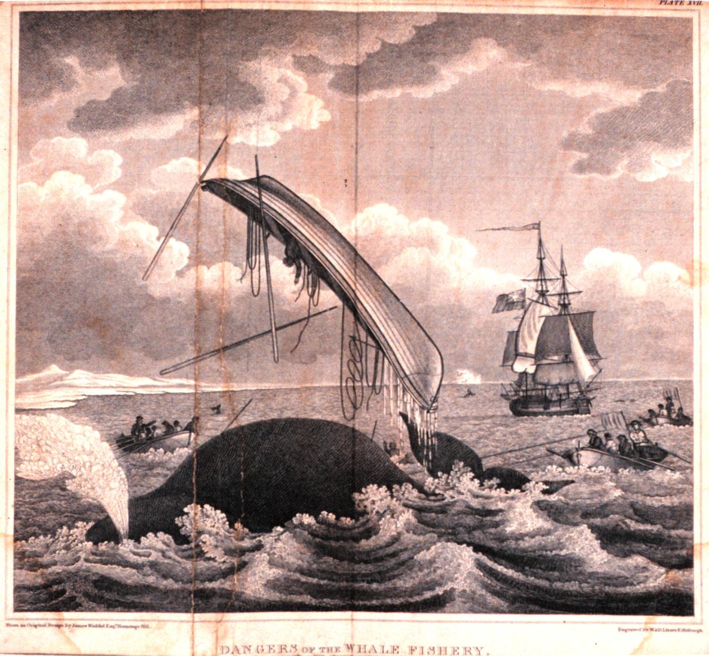 Era of Whaling