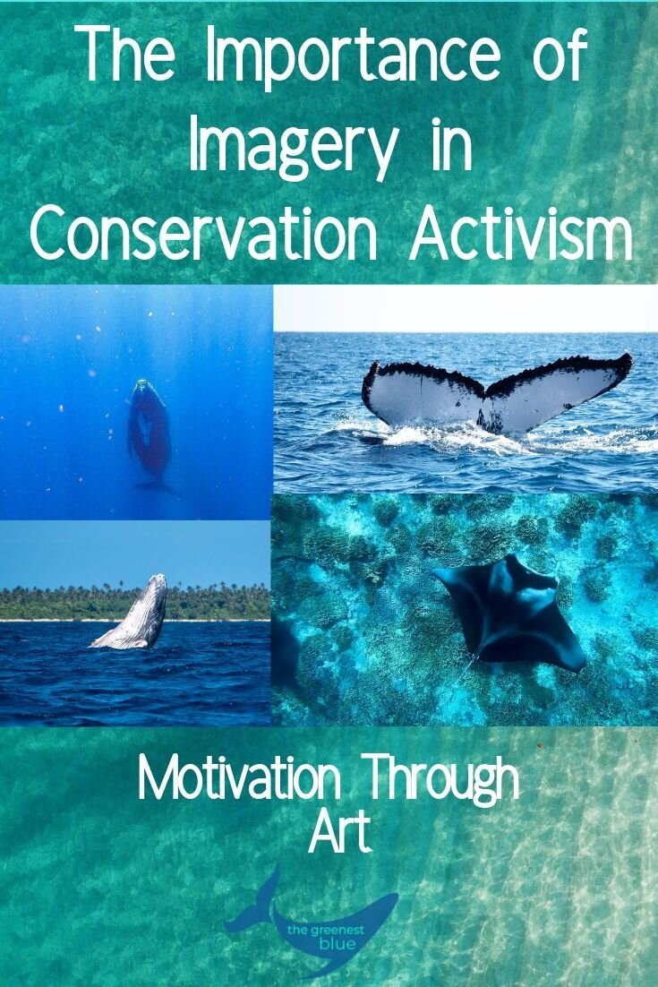 The Importance of Imagery in Conservation Activism