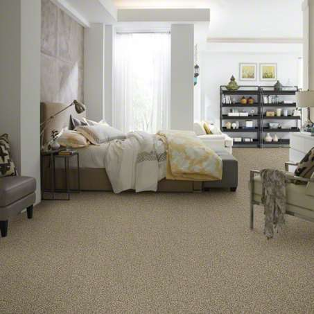 shaw carpet 2.jpg