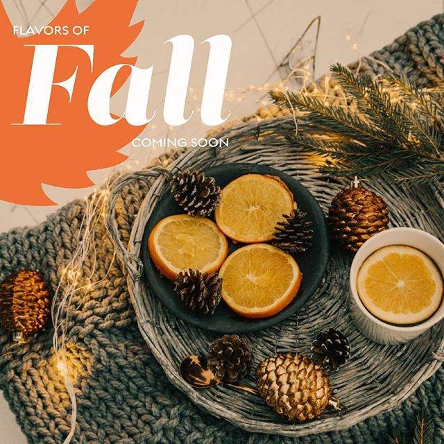 It's been a while since we have been on here! We have been working hard on some fun new ideas. As today marks the first day of fall, we wanted to let you know we have some fun things planned for the flavors of fall! We can't wait to show you! Stay tuned... #firstdayoffall #fallflavors #palateconscious