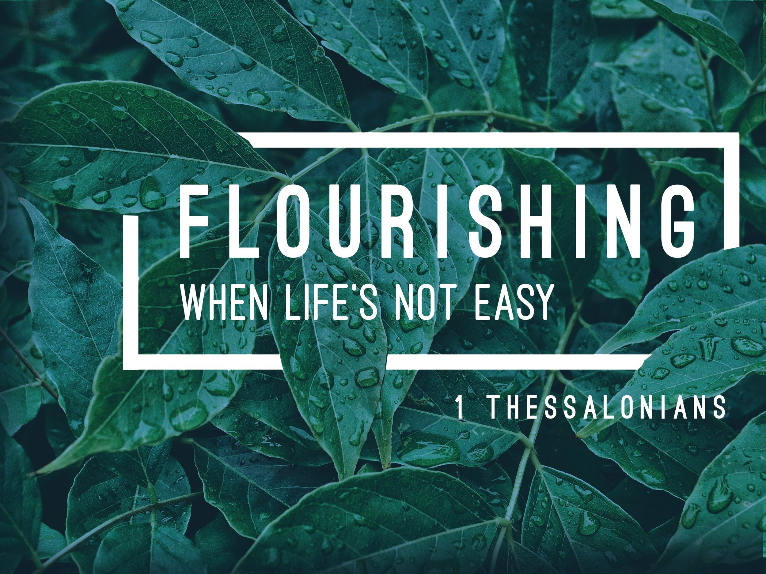 Flourishing - Title Slide for Sermon.jpg