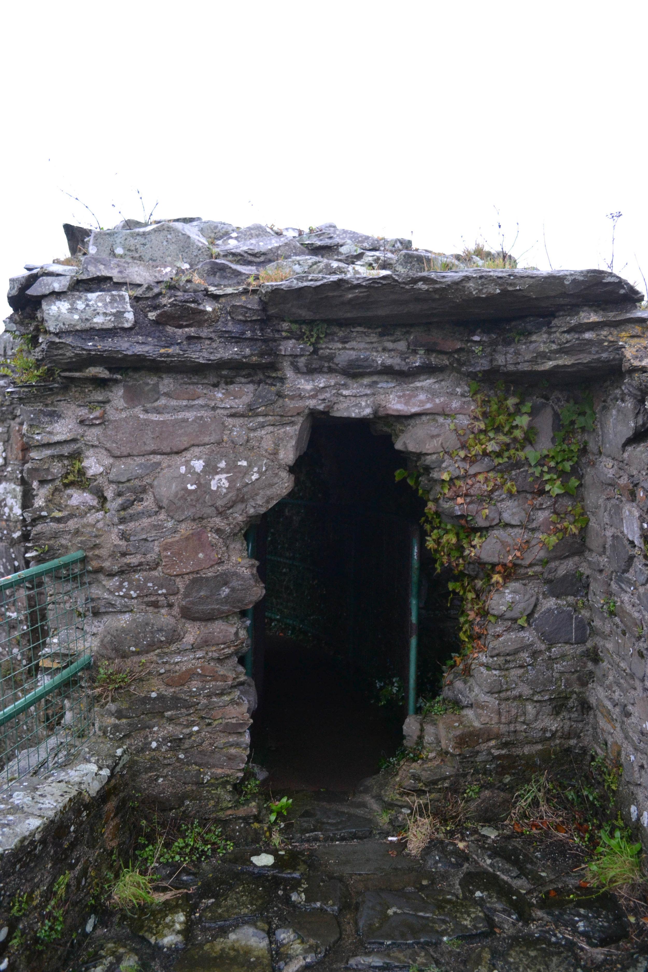 bri rinehart; ireland; dundrum castle
