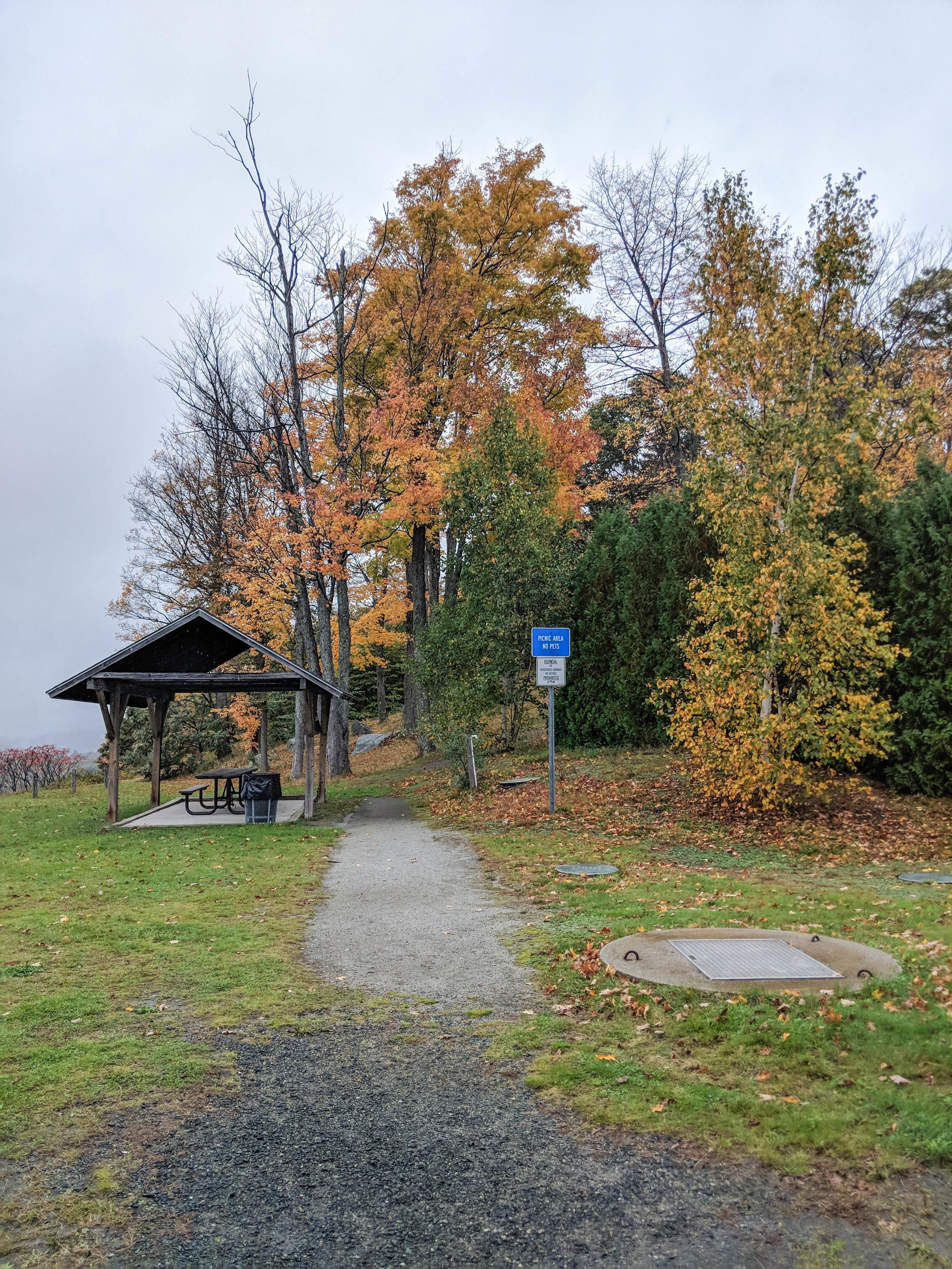 new hampshire; bri rinehart; photography; fall; trees