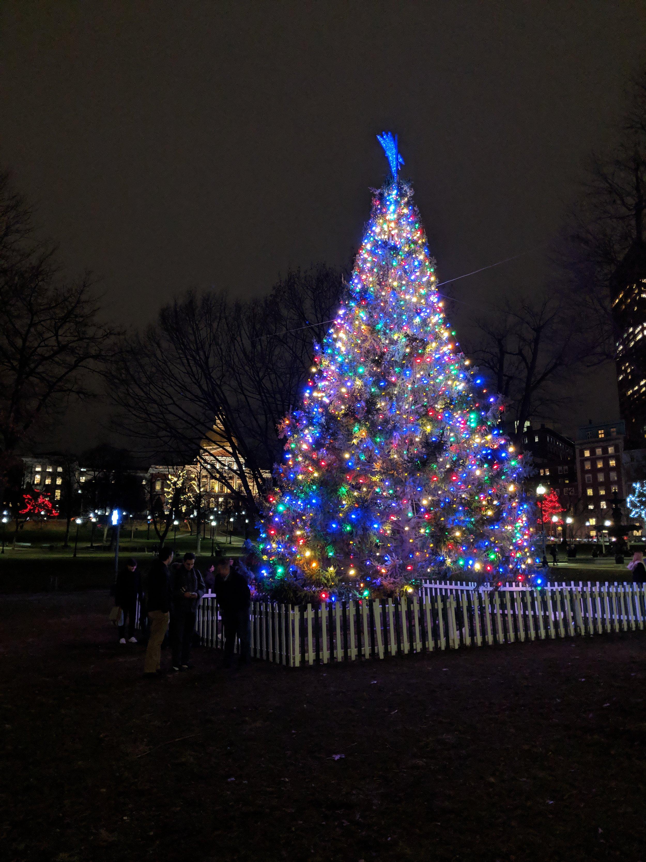 bri rinehart; christmas; boston common; photography; boston