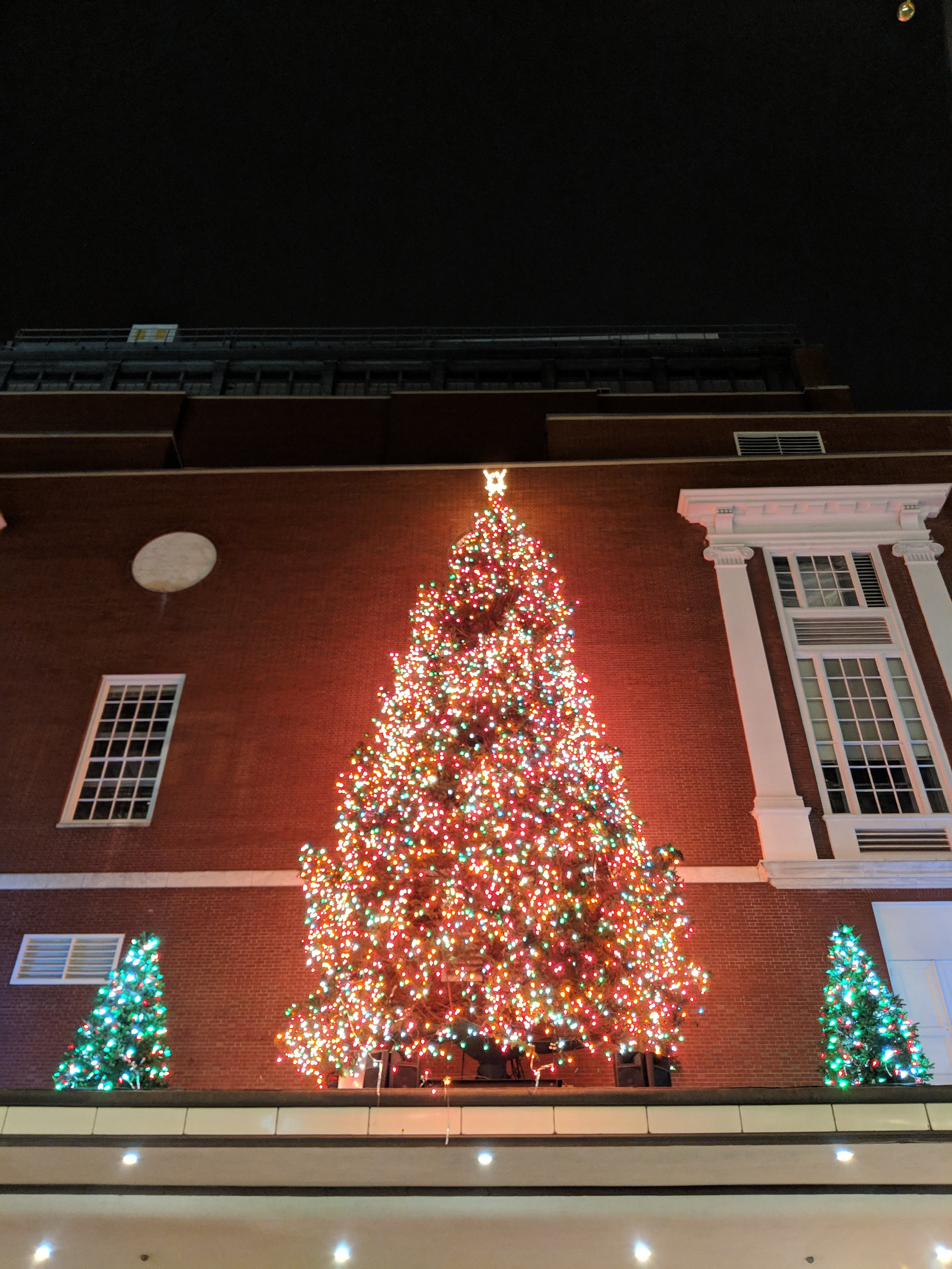 bri rinehart; photography; boston; Christmas; lights