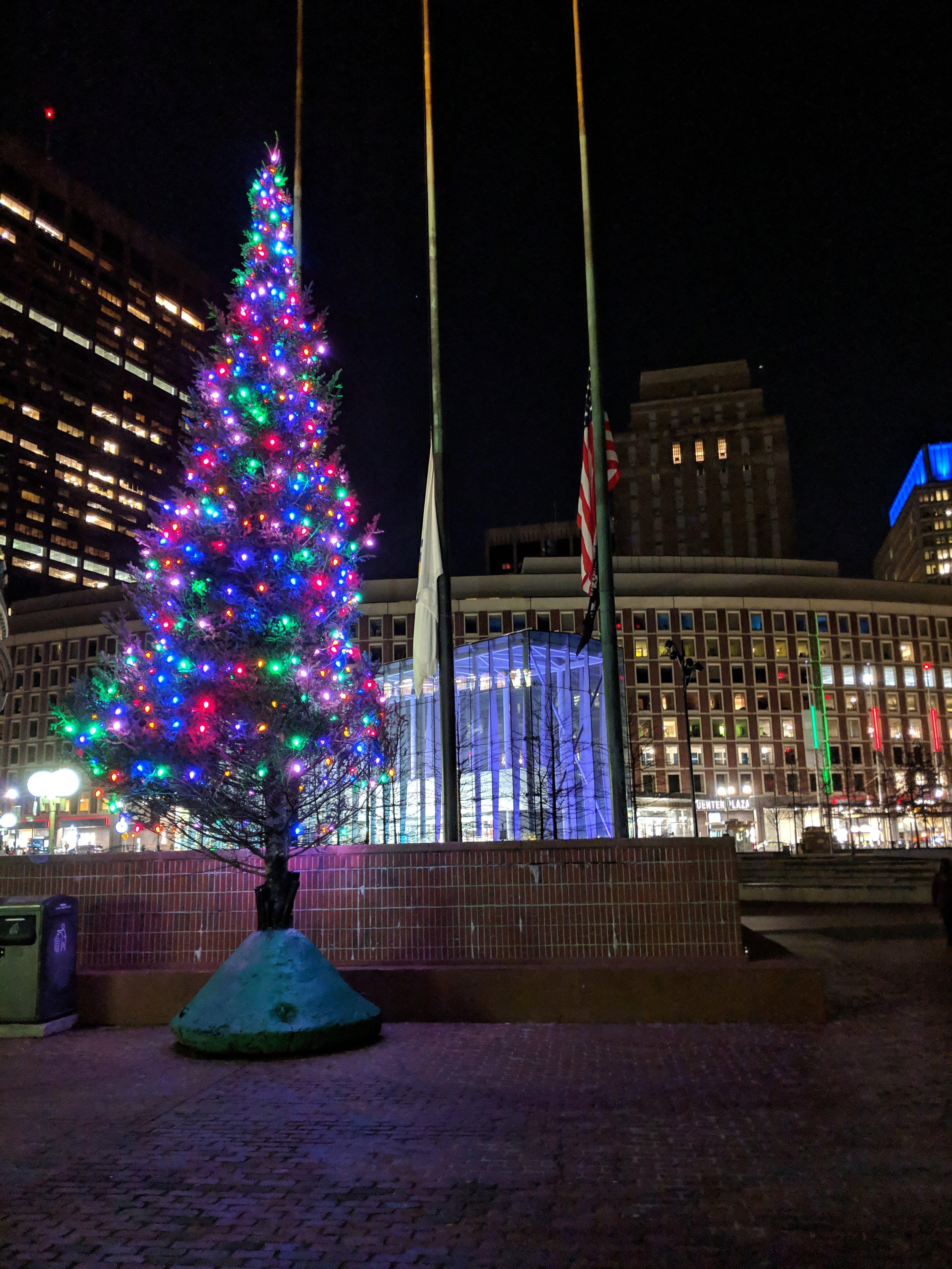 bri rinehart; photography; boston; Christmas; trees; lights