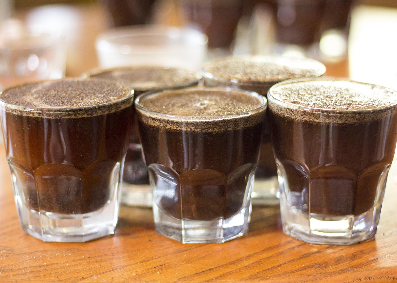 Flying M_Coffee Cupping 3.jpg