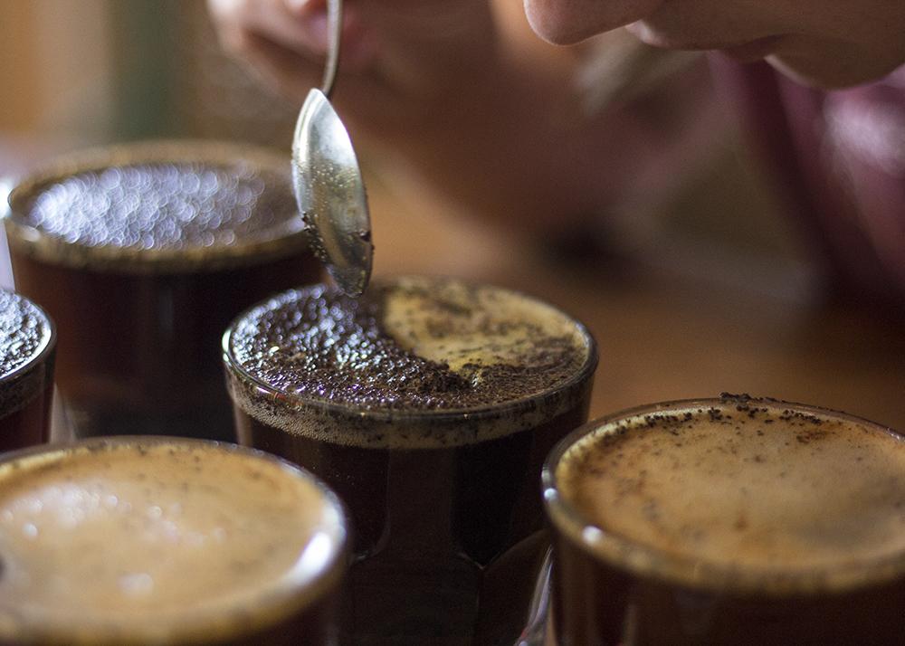 Flying M_Coffee Cupping.jpg