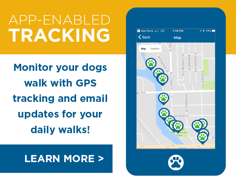 TailsUp_GPS Tracking