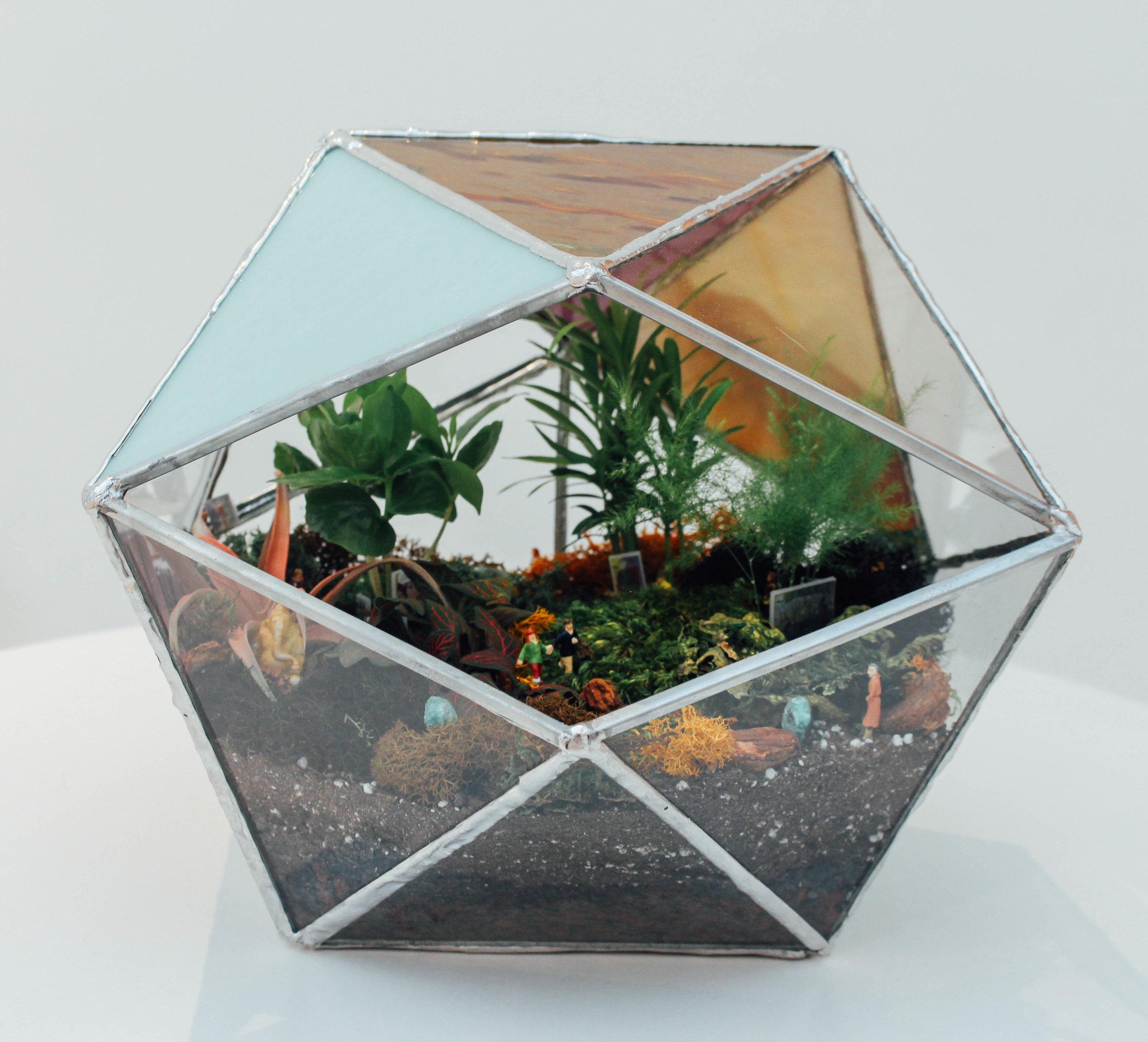 terrarium.jpg