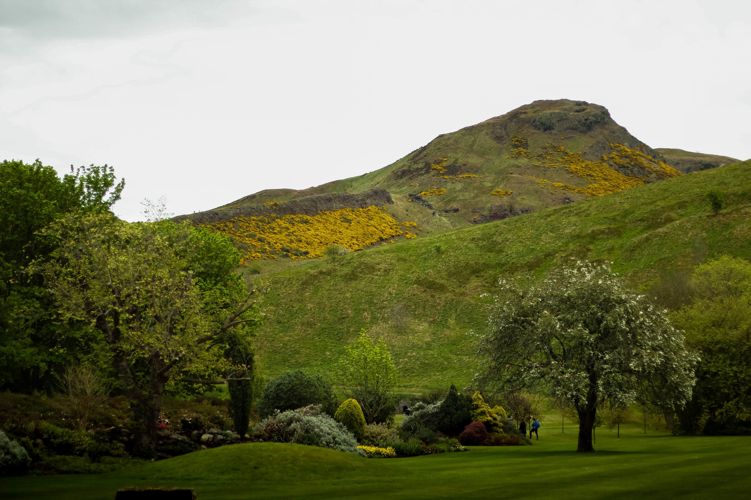 (View of part of Arthur's Seat from the Palace gardens)