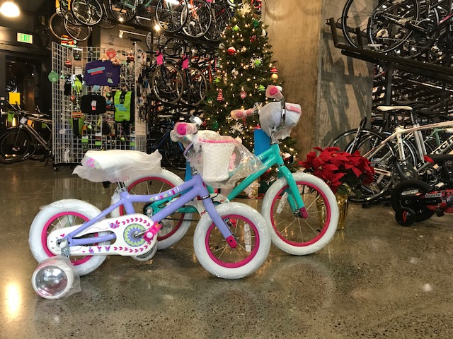 Girls Bikes Photo.jpg