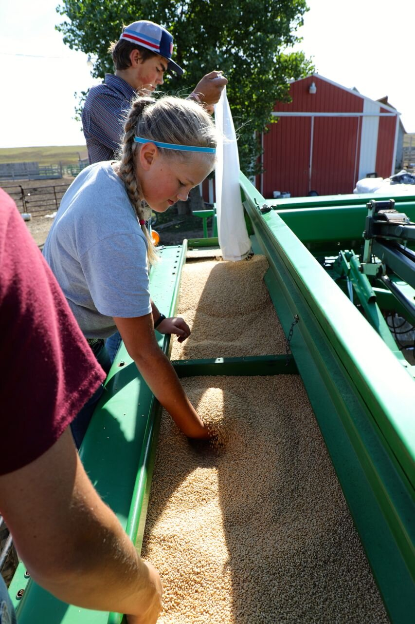- Our hearts hurt for those that live in eastern South Dakota that have been so impacted by abundant rain and flooding, however our region is perhaps the best it has been for years. We planted wheat today. Good soil moisture... Good help in filling the drill.