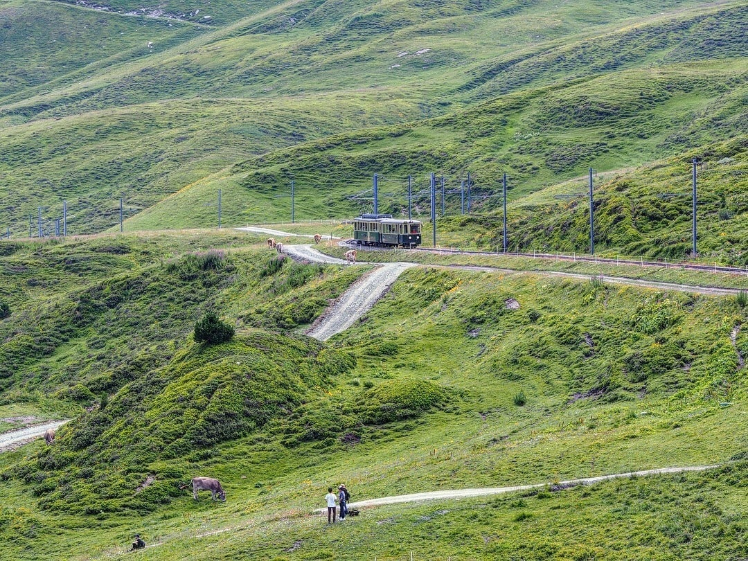 與阿爾卑斯對坐用餐,聽著整個山谷迴盪著牛鈴的聲響,很是夢幻。