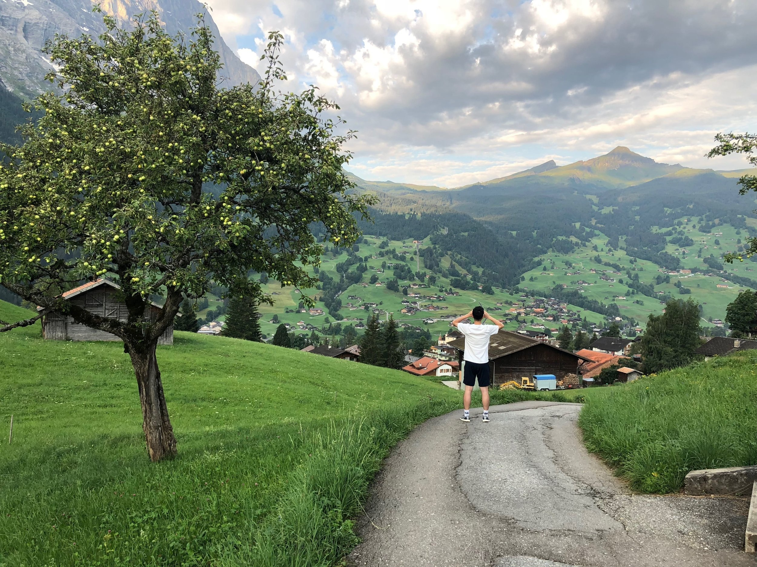 Grindelwald - 格林德瓦