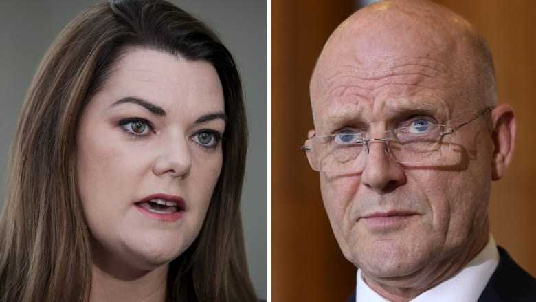 Sarah Hanson-Young says David Leyonhjelm hurled sexist abuse at her during a debate on violence against women. Photo: Fairfax Media