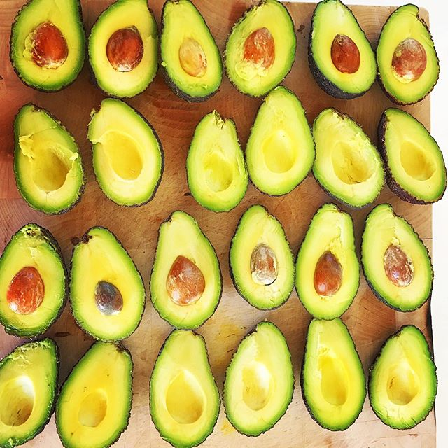 You know it's going to be a good day when all the avocados are perfectly ripe 🥑 💚 . . . #avolove