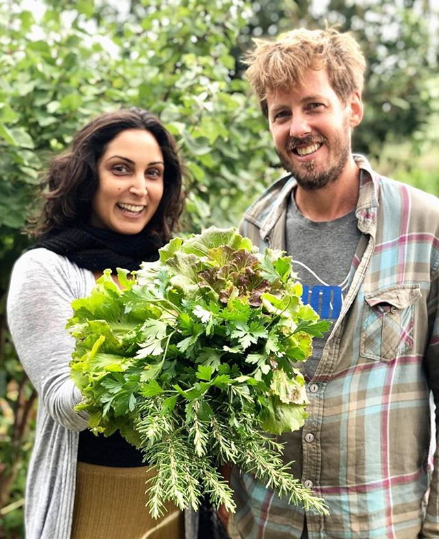 This is Abel, he is my neighbour, friend and one of the most loving farmers on the island. He has a gorgeous permaculture farm where he produces delicious fruits and veggies. I feel blessed to have the pleasure of harvesting food with him and learning more about the process of growing it ✨ Gracias @abelsudacov for the edible 💐 . . . #ecoverduras #permacultureibiza #permacultura #growyourownfood #ibizafarmers