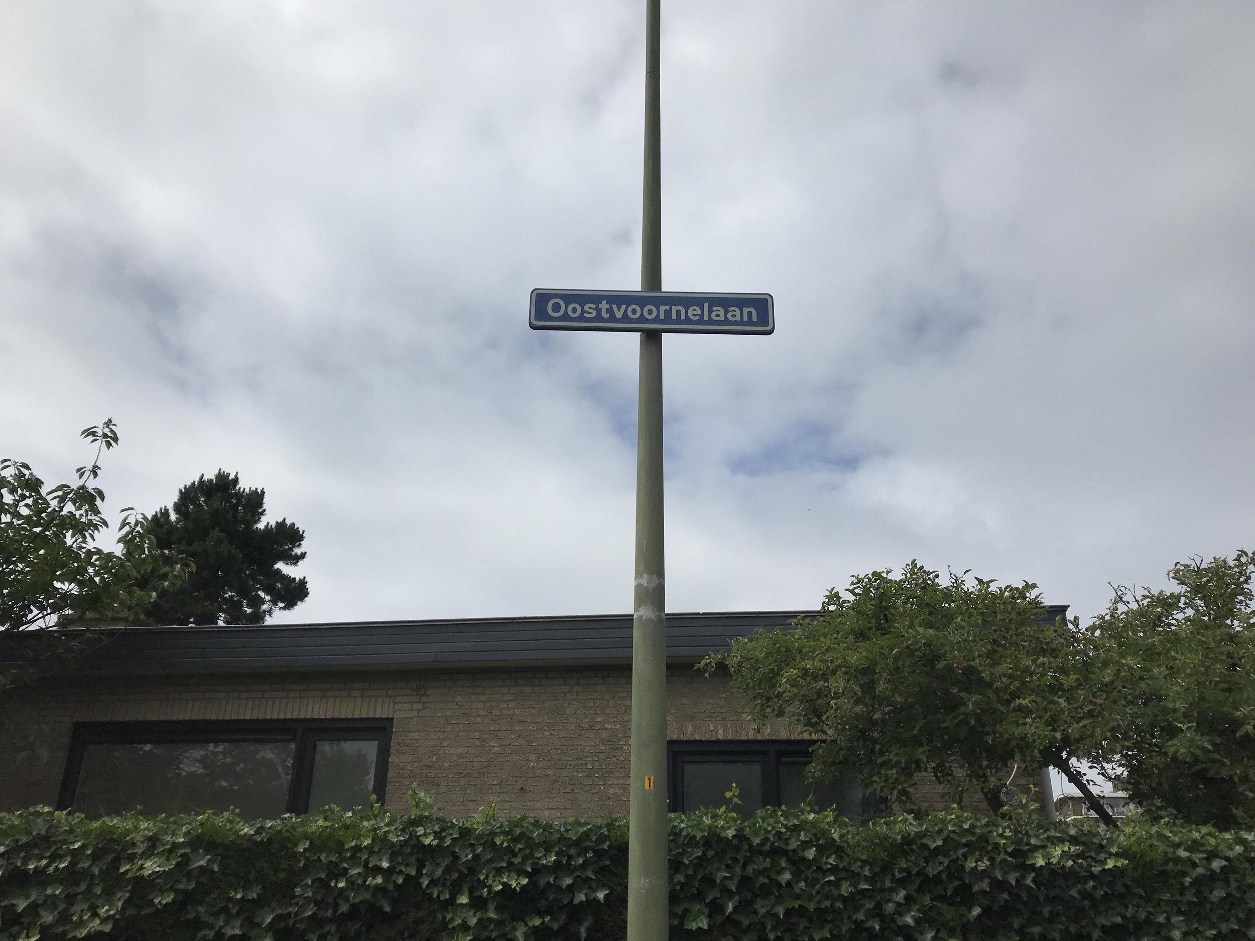 straatinitiatief Oostvoornelaan