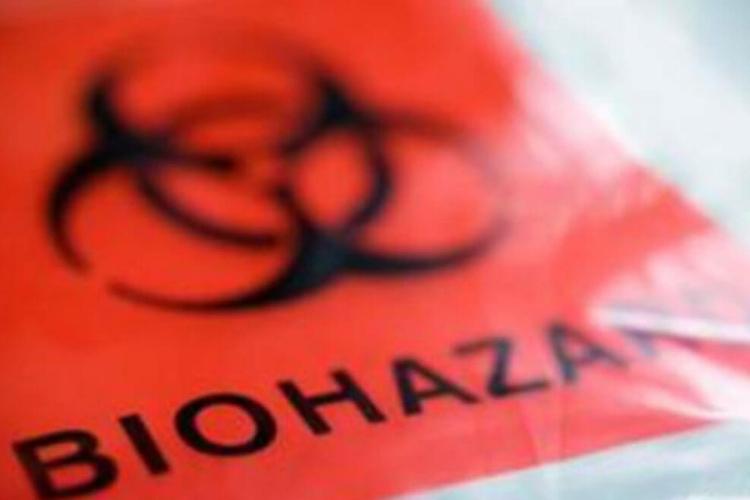 bioonecleanup1.jpg