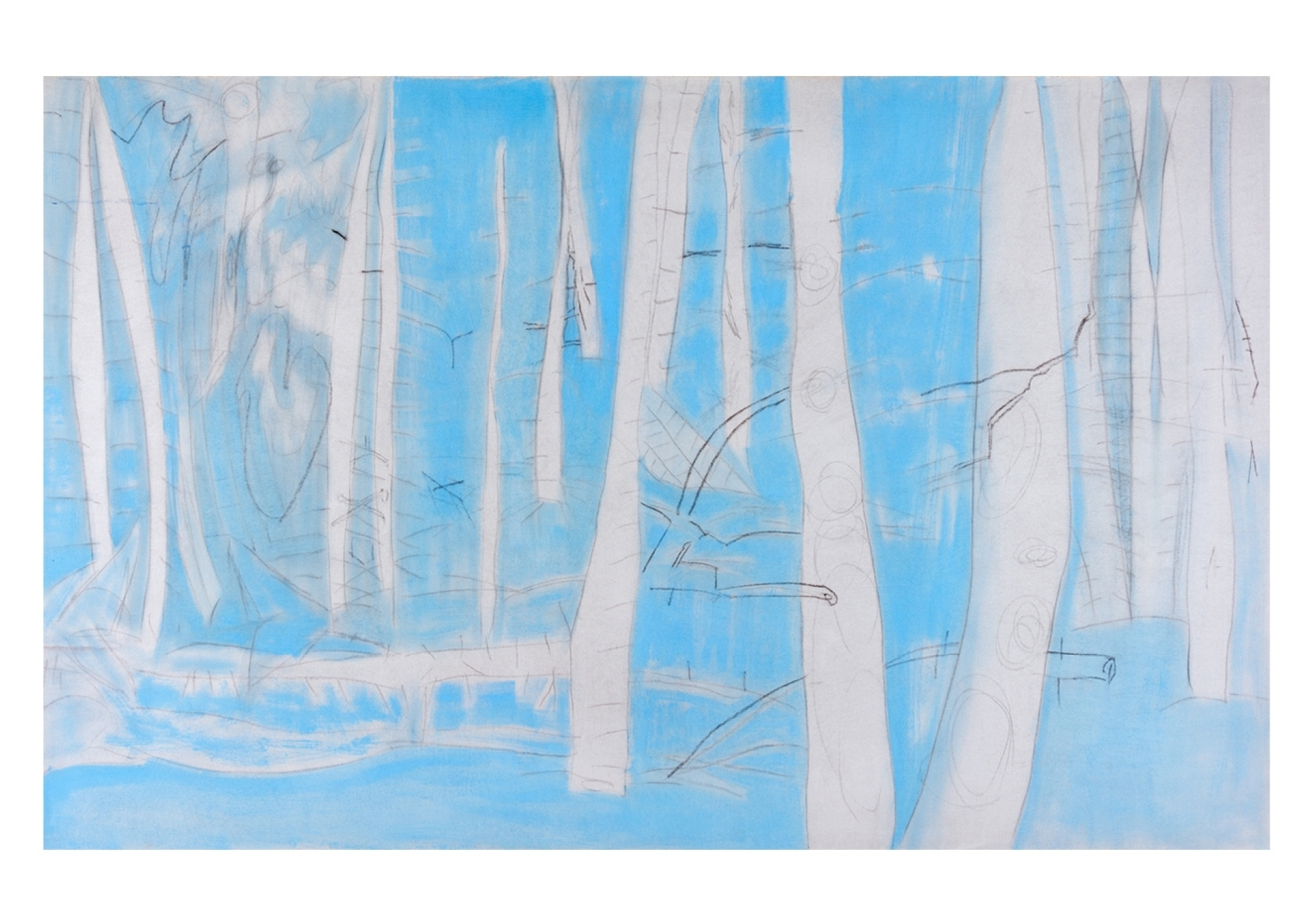 """Blue Wood , 2016 oil and charcoal on canvas, 40"""" x 63"""""""