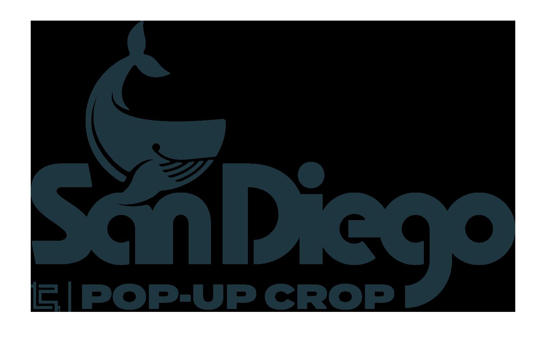 PopUp SD Header Logo.png