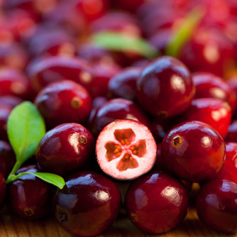130304_cranberries.jpg