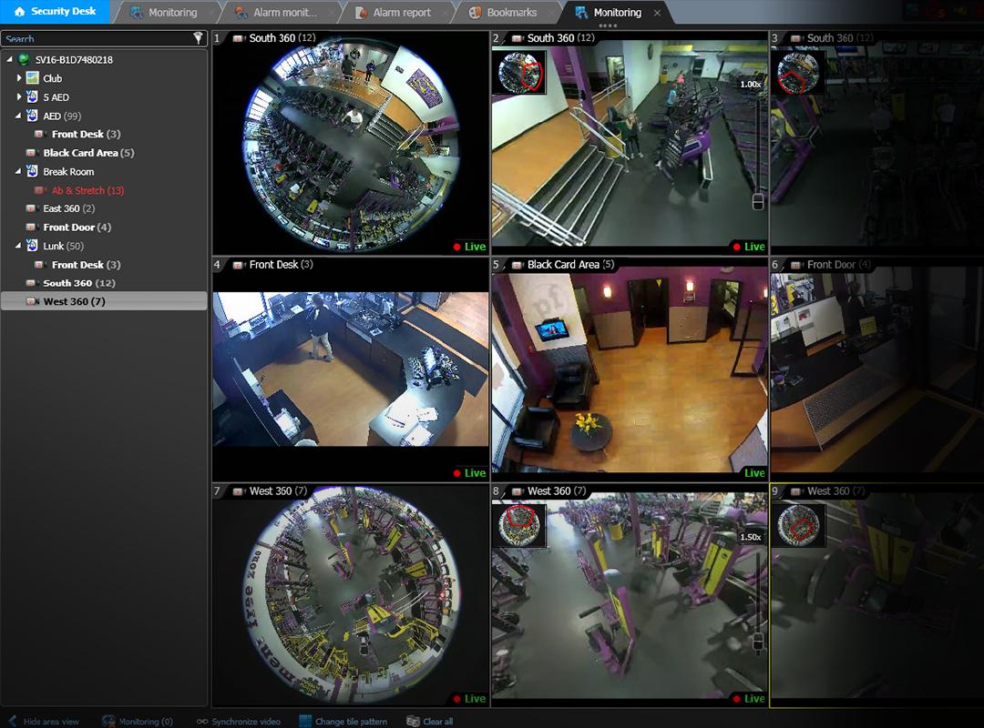 monitor-web.jpg