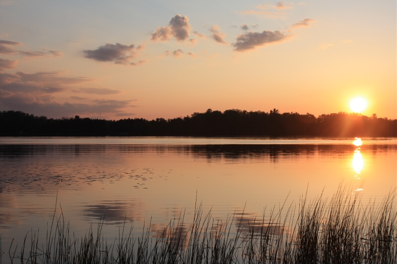 Beautiful lakeshore to enjoy during the retreat