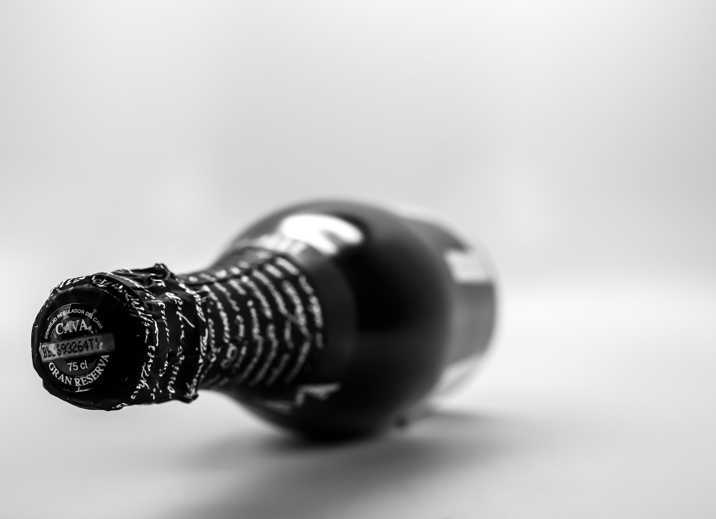 Musings by the Glass - Ode to Spanish Wine and Cheese - Spanish Cava Bottle in Black and White