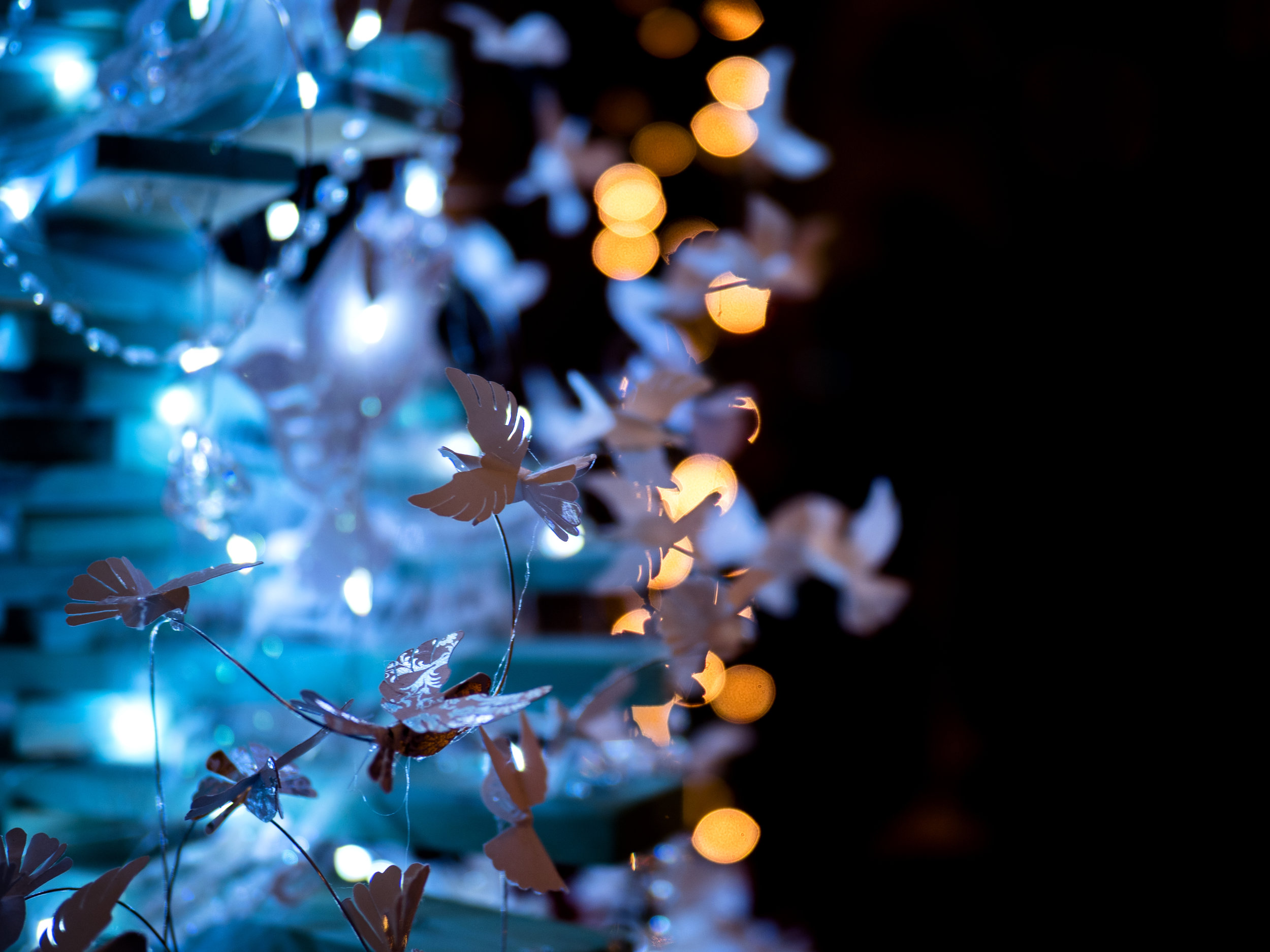 Musings by the Glass - Eggnog and Malasadas - Christmas Tree Lights and Bokeh