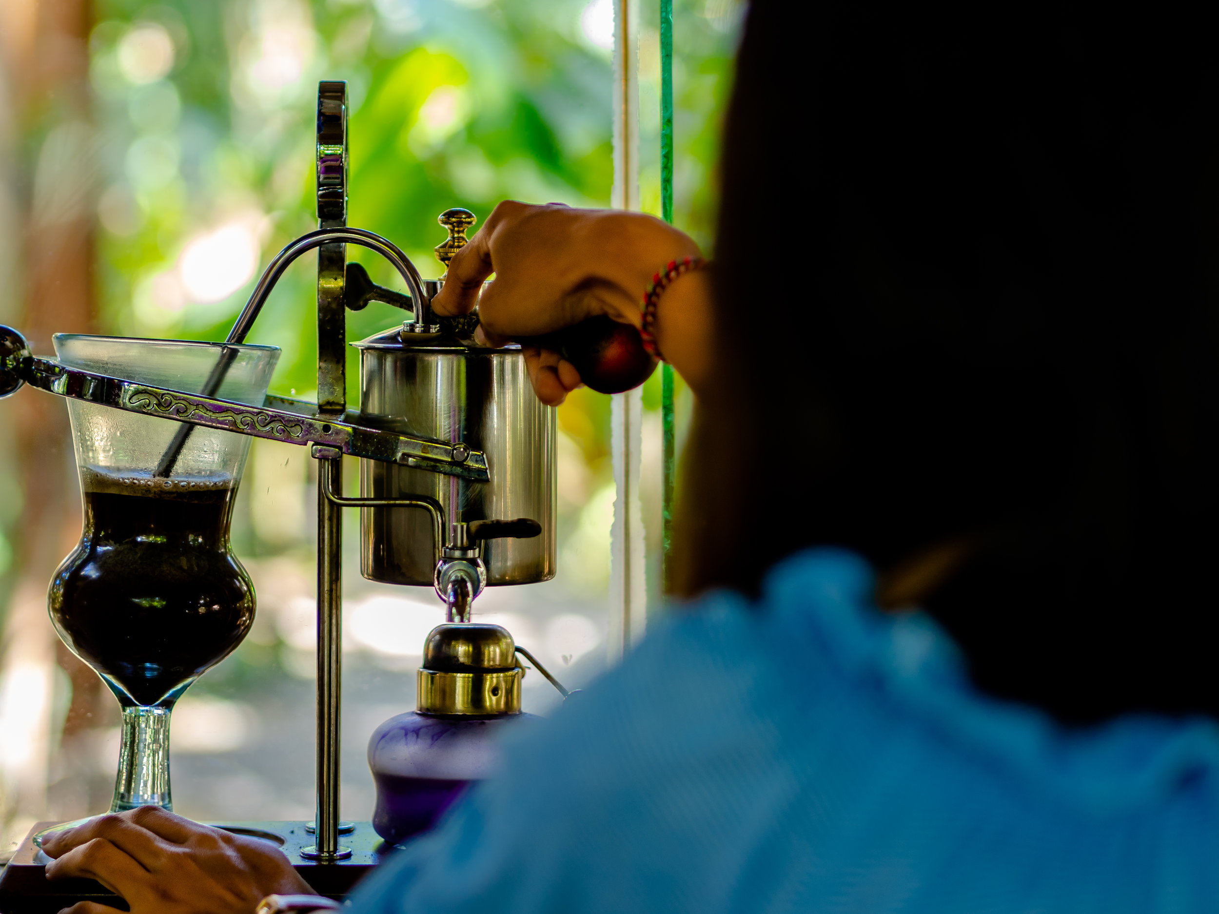 Musings by the Glass - Cat's Tale of Kopi Luwak - Woman Brews Kopi Luwak