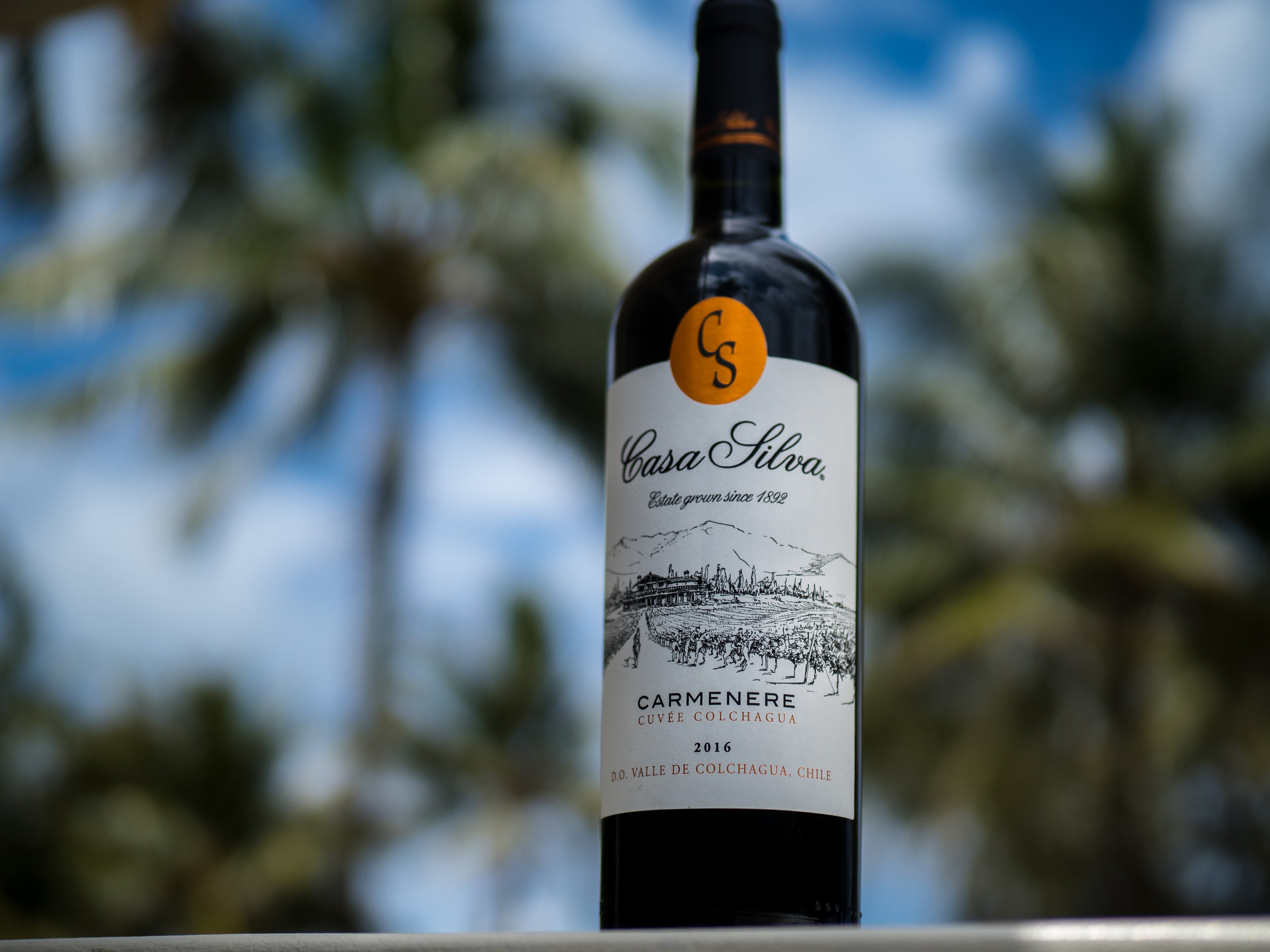 Musings by the Glass - Casa Silva Carmenere Cuvee Colchagua