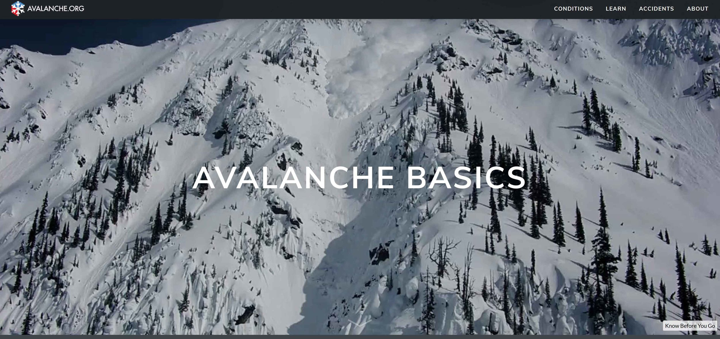 Avalanche Basics Cover
