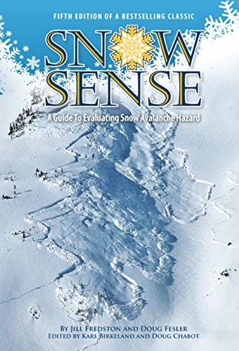 Snow Sense - Cover